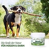 AniForte Wurm-Formel 20 g- Naturprodukt für Hunde - 3