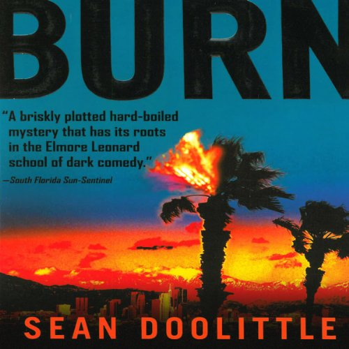 Burn audiobook cover art