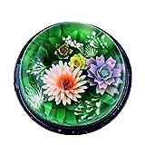 Onsinic 11pcs Gelatina Acero Inoxidable Boquilla Aguja De La Jeringuilla 3D Jelly Decoración De del Pudín del Molde De Cocina Accesorios para Hornear