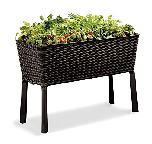 KETER Resin Elevated Garden, All Weather, Self-Watering Plastic Planter (Brown Rattan)