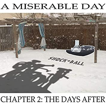 a miserable day chapter 2: The days after