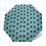 Best Uv Parasols - Travel Sun&rain Umbrella - Light Compact Parasol Review