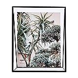 Amazon Basics - Marco de fotos flotante, diseño de cuña, 20 x 25,4 cm, color negro