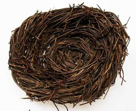 Natural Twig Bird Nest 5'' - Set of 6 Nest