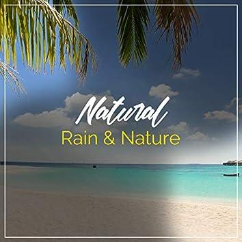 Natural Rain & Nature, Vol. 6