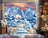 AOTAO Paint By Number Bear DIY Pictures By Numbers Animal Kits Drawing On Canvas Hand Painted Painting Art Gift Home Decor(40x50cm 16x20inch)