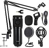 Best Condenser Mics - Techtest BM800 Broadcasting Studio Recording Condenser Microphone Mic Review