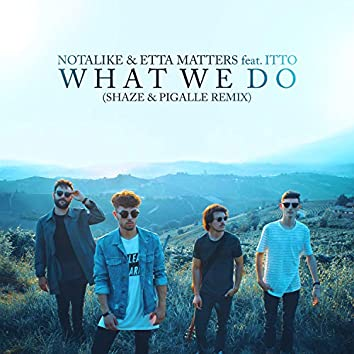 What We Do (Shaze & Pigalle Remix)