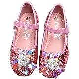 DJSJ- Zapato Princesa Niña Infantil de Disfraz Sandalias para...