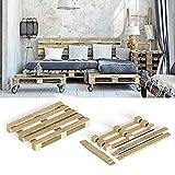 Vicco Europalette Bausatz Möbelpalette Palettenbausatz zerlegt 120x80cm Palettenmöbel