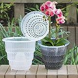 Aemiy Zoomarlous Vaso Orchidea Trasparente Forato, Vaso per Orchidee plastica Trasparente con Fori, Cavo Vaso per coltivatori di Orchidee e ortaggi, Giardinaggio Domestico, 12cm