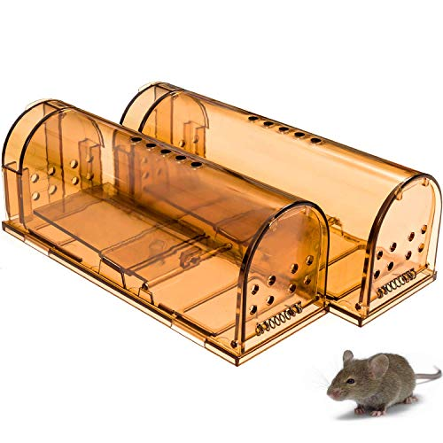 CaptSure Original Humane Mouse Traps, Easy to Set, Kids/Pets Safe, Reusable for Indoor/Outdoor use, for Small Rodent/Voles/Hamsters/Moles Catcher That Works. 2 Pack (Small)