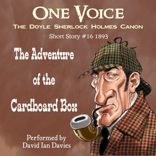 The Adventure of the Cardboard Box cover art