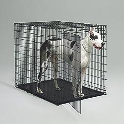 Doggekisten