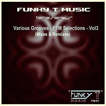 Various Grooves: FTM Selections, Vol. 3 (Mixes & Remixes)