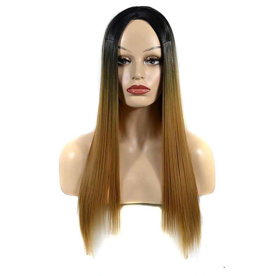 複雑欠員パイントHOHYLLYA ライトブラウンオンブルロングストレートウィッグ女性用中部かつらダークルーツ耐熱ウィッグパーティーウィッグ (色 : 淡い茶色, サイズ : 60cm)