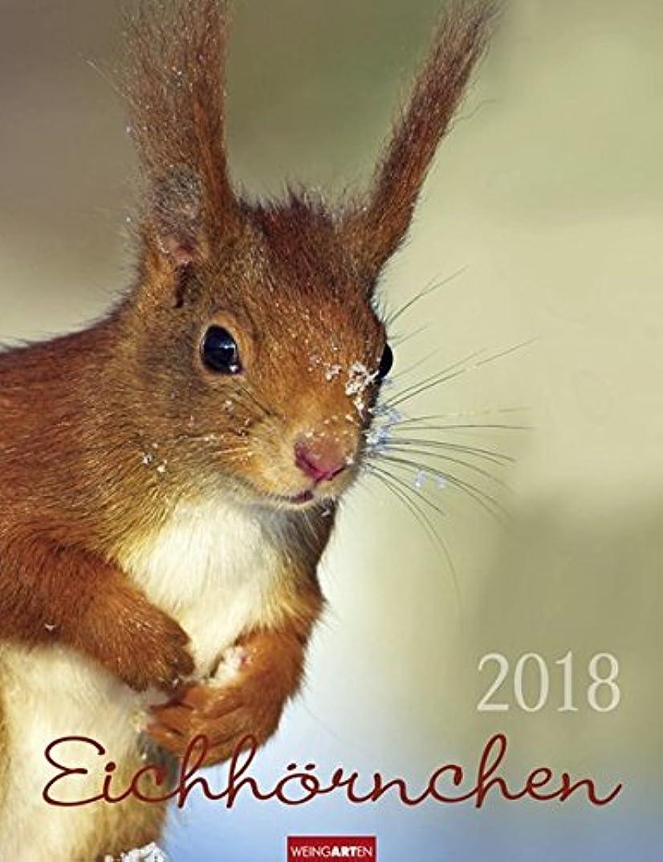 シルエットマイクセクタEichhoernchen - Kalender 2018