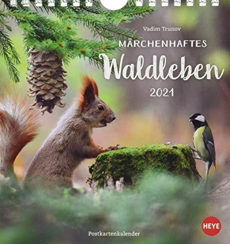 Vadim Trunov: Waldtiere Postkartenkalender 2021 - Kalender mit perforierten Postkarten - zum Aufstellen und Aufhängen - mit Monatskalendarium - Format 16 x 17 cm