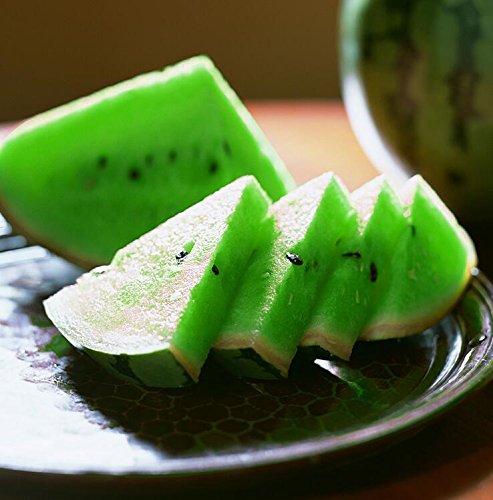 Livraison gratuite 11 des espèces rares Graines de pastèque chinoise à choisir des fruits délicieux melon d'eau graines bonsaïs - 50 Pièces 8