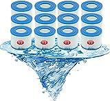 Denkmsd Cartucho de Filtro de Repuesto Tipo Vi para Bestway Pool Filter Vi Cartucho de Filtro para Piscina para Bestway 58093, para Piscinas hinchables para Lay-Z-SPA Miami, Vegas, Monaco (12 Pcs)