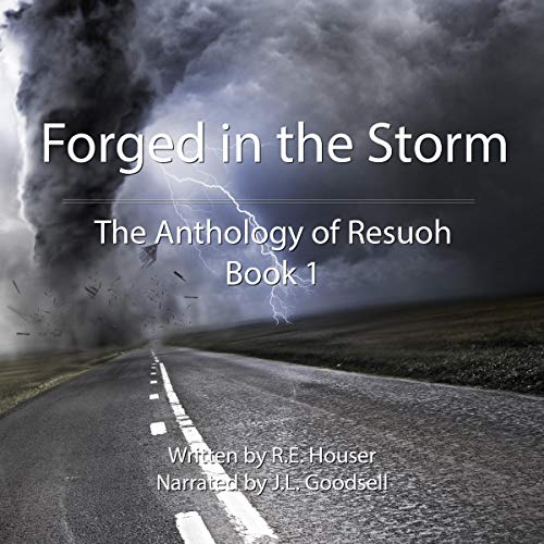 Forged in the Storm audiobook cover art