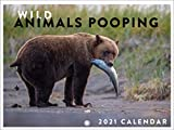 Wild Animals Pooping Funny Gag Gift Nature Calls 2021 Wall Calendar 12 Month Monthly Full Color Thick Paper Pages Folded Ready to Hang 18x12 inch