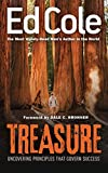Treasure: Uncovering Principles That Govern Success