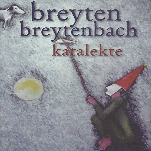 Breyten Breytenbach feat. Schalk Joubert & Ronan Skillen