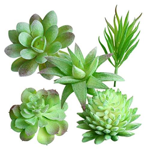 WINOMO Mini Green Plant Künstliche Sukkulenten Gefälschte Kaktus Pflanzen für Büro Haus Tisch Garten Dekoration 5 STÜCKE