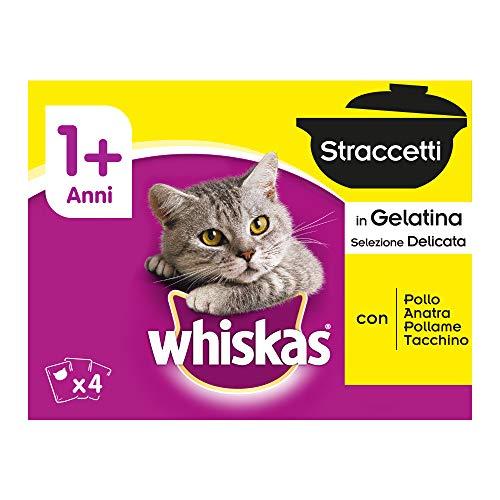 Whiskas Straccetti in Gelatina Selezione Delicata, 1+ Anni, 12 x 85 g - Cibo per Gatto - 4 Confezioni (48 Bustine in Totale)