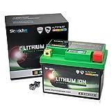 Skyrich HJTZ7S-FP batteria ricaricabile industriale Litio 12 V