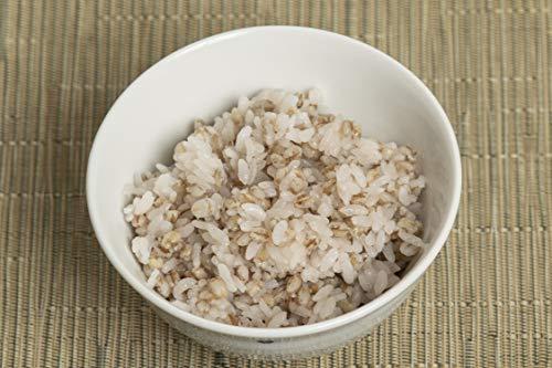 まんでがん 讃岐もち麦 ダイシモチ お徳用 1kg