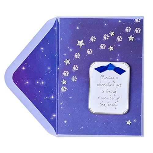 Papyrus Pet Sympathy Cards Paw Prints in Starry Night Sky, 1 EA