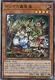 遊戯王 ティオの蟲惑魔 スーパーレア 20TP-JP102 トーナメントパック2020 Vol.1