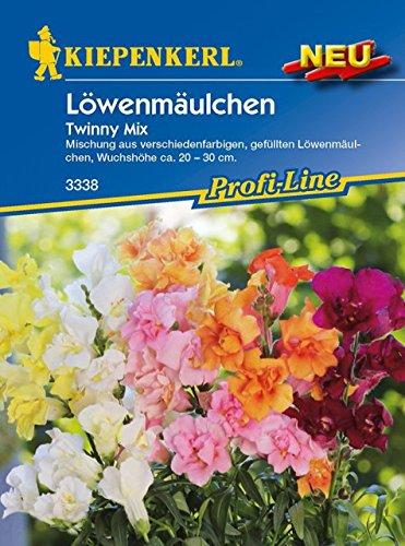 Kiepenkerl Antirrhinum majus (Löwenmäulchen Twinny Mix) 0-0cm / 1 Packung (Blumenzwiebeln, Sommerblüher (Aussaat im Frühjahr))