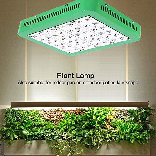 Zoternen Hoch PAR LED-Pflanzenlampe für Gewächshaus Innenraum Hydrokultur Blumen Revolutionärer Wärmeverteiler 240W
