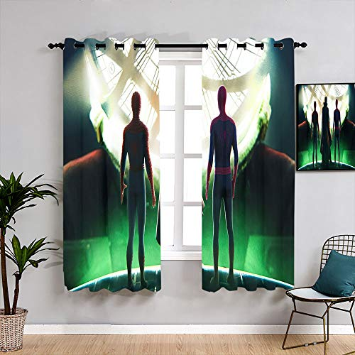 Matt Flowe doctor extraño en multiverso cortinas lavables W63 x L63 Backout cortina conjunto de cortina de ventana de tela para aislamiento térmico decoración