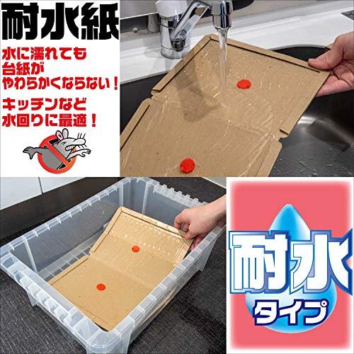 イカリ耐水チュークリン業務用5枚入