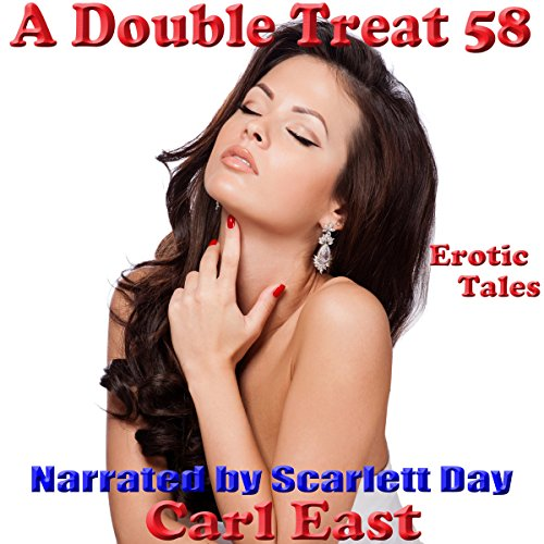 A Double Treat 58 audiobook cover art