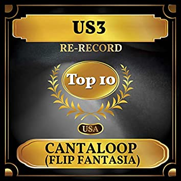 Cantaloop (Flip Fantasia) (Billboard Hot 100 - No 9)