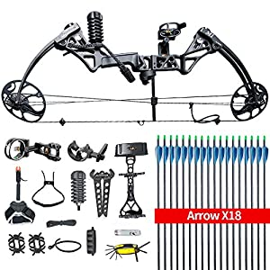 HYF Compound Hunting Bow Kit: USA Gordon Limbs,Fully Adjustable 19-30″ Draw19-70Lbs,IBO Rate 320fps.Ship from USA Warehouse