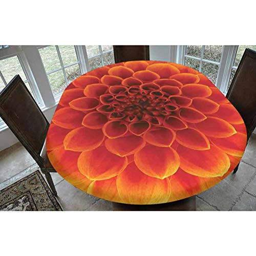 Abstract Home Decor Polyester Fitted Tablecloth,Abstract Flower and Petals Seasonal Blossom Closeup Picture Gardens Decorative Oblong Elastic Edge Fitted Table Cover,Fits Oval Tables 68x48