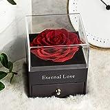 Rosa Real preservada con Collar I Love You Caja de Regalo, Rosa eterna para el día de San Valentín, día de la Madre, Aniversario de Bodas, Regalo de cumpleaños para Ella-Rojo