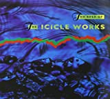the Icicle Works: The Best of the Icicle Works (Audio CD (Best of))