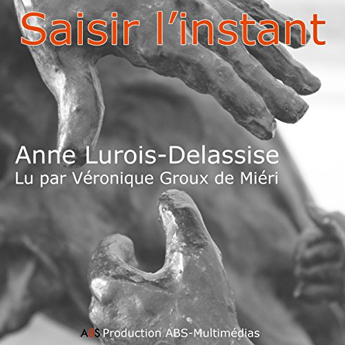 Saisir l'instant audiobook cover art