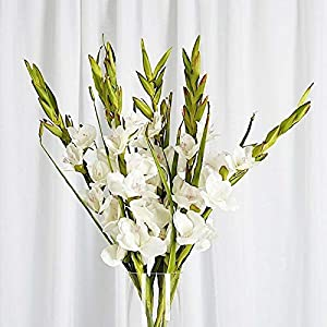 GLADIOLUS 6 Silk IVORY Stems Wedding Flowers Bouquets Centerpieces Decorations