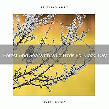 Forest And Sea With Wild Birds For Good Day