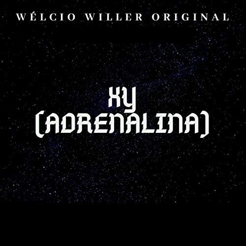 Wélcio Willer