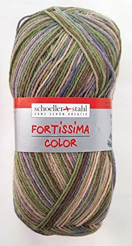 Schoeller und Stahl Fortissima Color Sockenwolle aus 75% Schurwolle (Superwash), 25% Polyamid (346 Wald Mix)