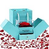 Diealles Shine Rosa Real Preservada, Rosa Eterna Caja de Joyería para el día de San Valentín Aniversario de Bodas Día de la Madre Regalos románticos para Ella